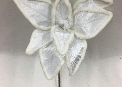 Flores-30