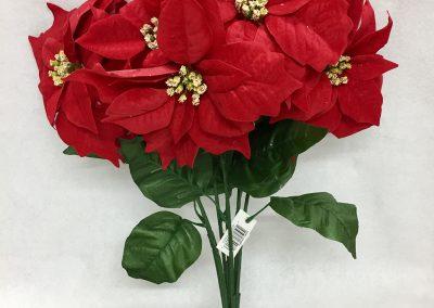 Flores-33